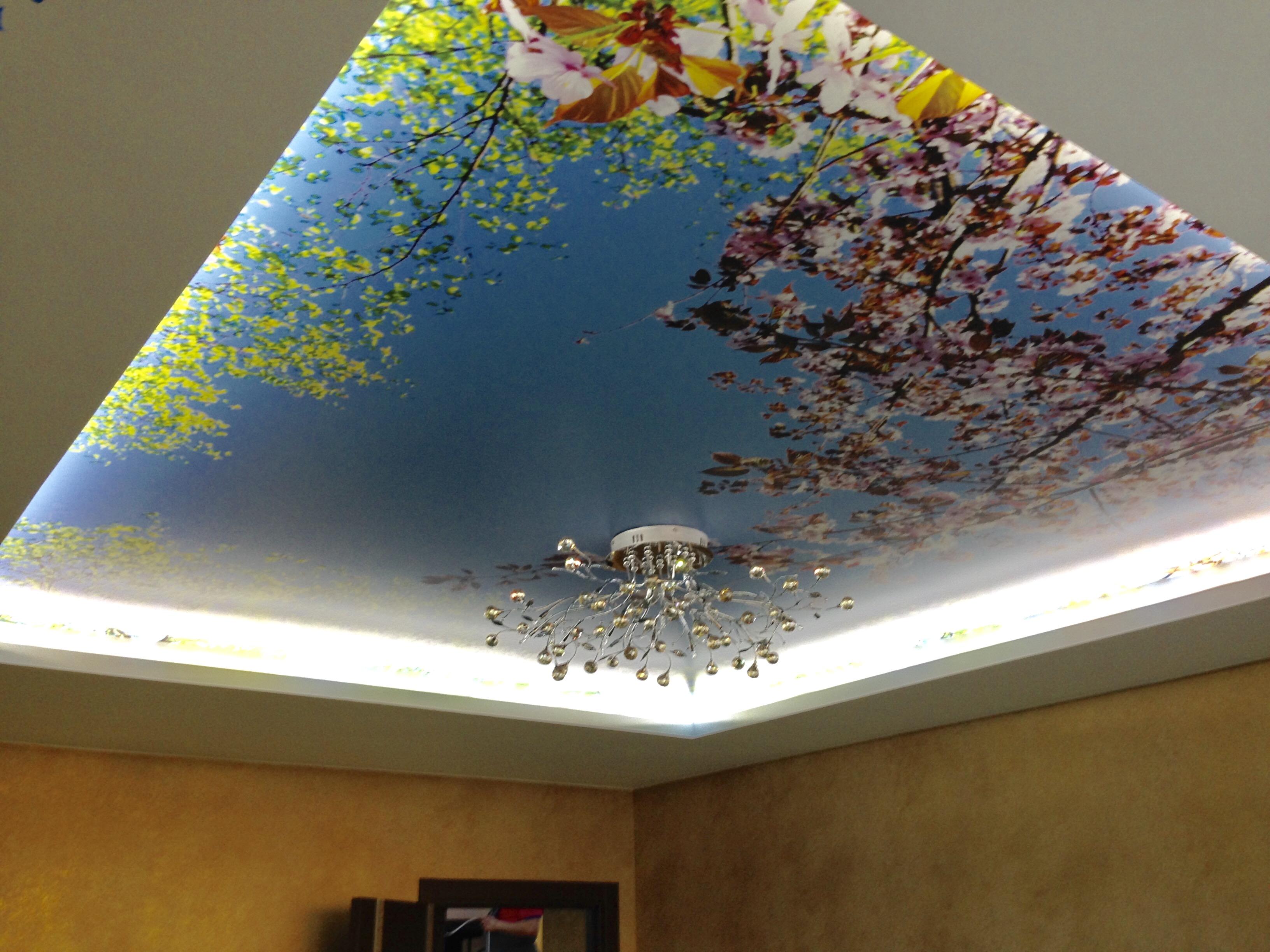 фотобанки с печатью на потолке этих интересных объектов